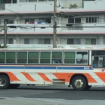 okinawabasu